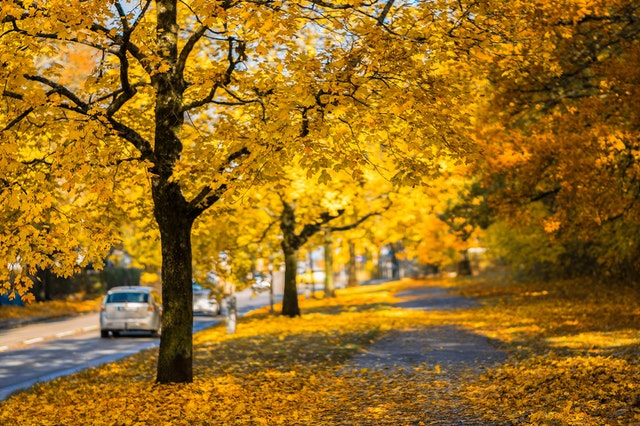 5 Reasons To Sell Your Home This Fall