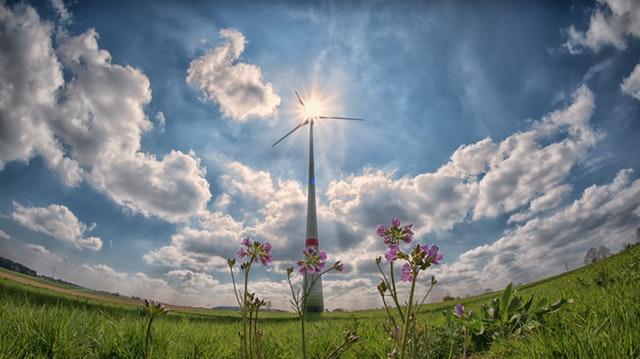 , 5 Trends Shaping Green Homes, Michael Inkman, Michael Inkman
