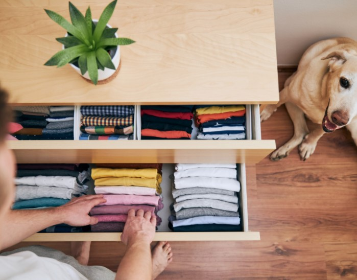In Less Than An Hour A Day, A Home Can Be Organized Quickly